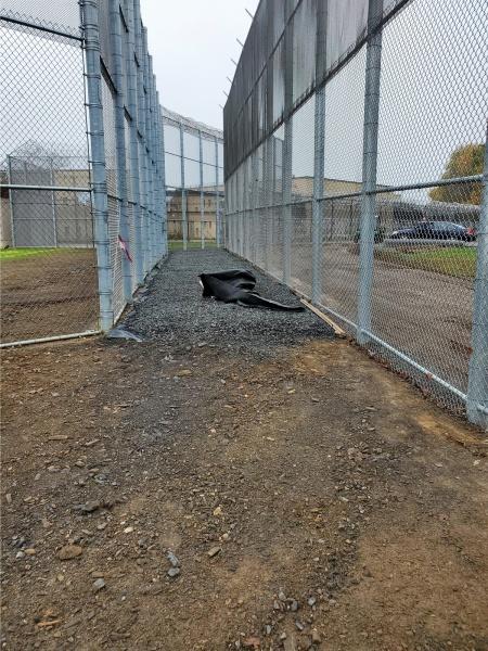 Bucks County Women's Prison